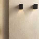 spatula_bagnoavorio_part03